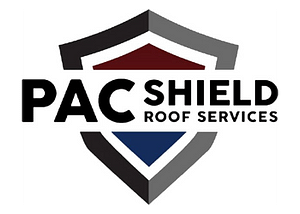 PAC shield 700x500 BG transparent Xceleran provides small to midsize businesses with the tools and services necessary to cost effectively grow and scale their business!